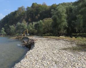 Odstranjena drevesna in grmovna zarast. foto: Dominik Bombek